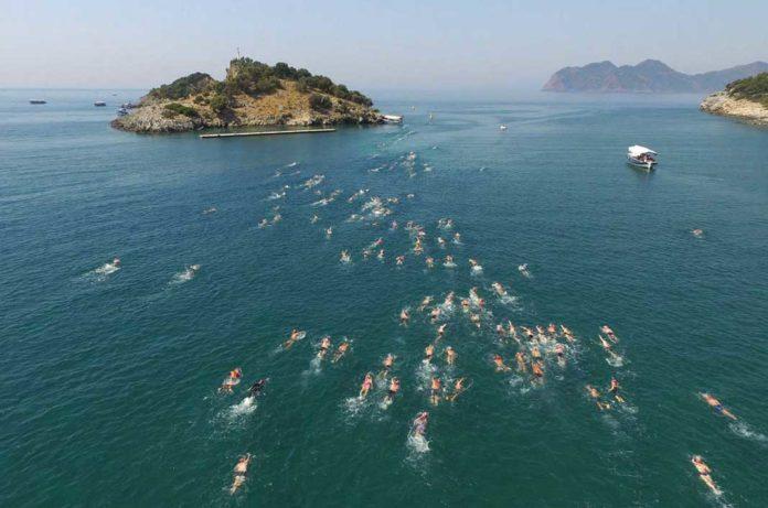Carettalarla yüzüyorlar